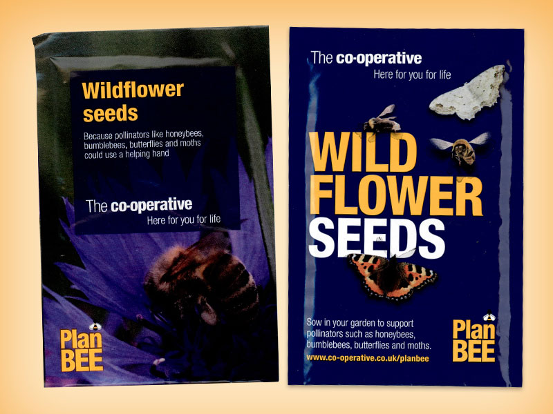 Wildflower Seeds