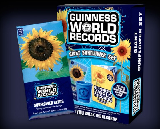 Guinness Promotional Sunflower Set